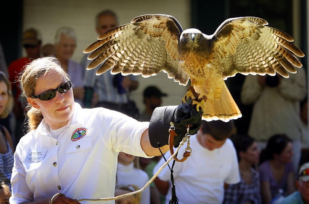 Alabama Coastal Birdfest